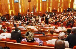 "Senate passes ""Not Too Young To Run bill"