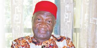 Ohanaeze Ndigbo targets 2023 for presidency