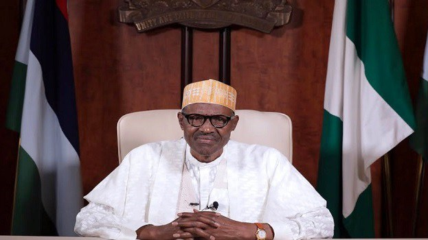 How Defence Minister deepened President Buhari's agony