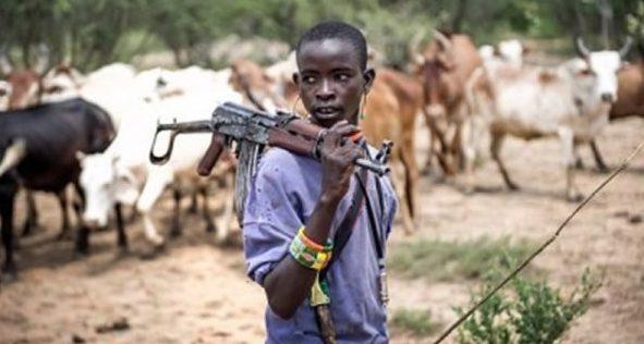 Herdsmen: From sticks to guns