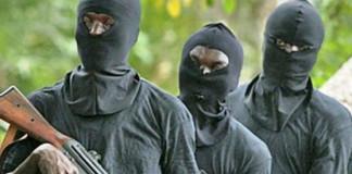 Gunmen abduct APC House of Reps. campaign DG