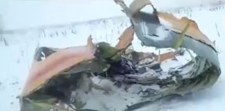 Russian plane with 71 people crashes
