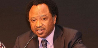 APC: If El-Rufai is for war, we are for a bigger war –Sani