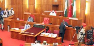 Senate calls for strong measures to fight irregular migration, human trafficking