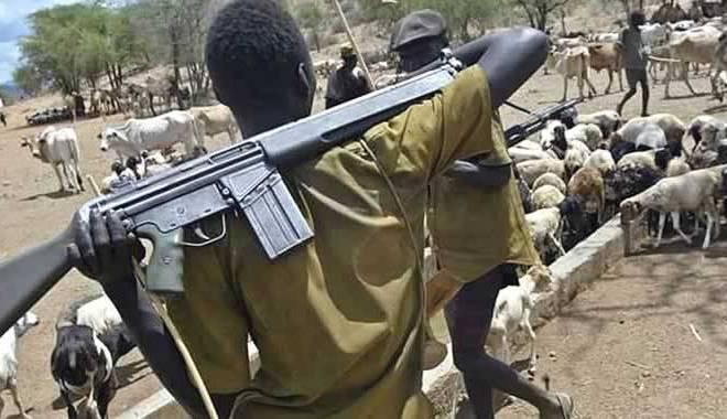 Police arrest herder, recover AK-47