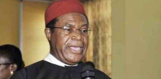 Ekweremadu: We'll no longer condone persecution of our kinsmen – Ohanaeze Ndigbo