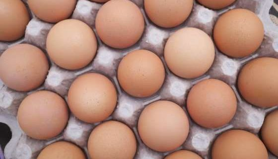 One egg per day may keep heart disease away –Study