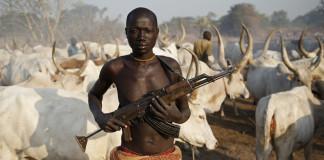 Armed fulnai herdsmen