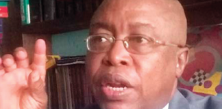 Uwazurike condemns Uche Okwukwu-led Ohanaeze Ndigbo visit to Buhari