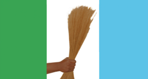 Appeal Court Nullifies Zamfara APC Primaries for Gov, Assembly Elections