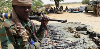 Nigeria, Cameroon Troops Eliminate 27 Terrorists