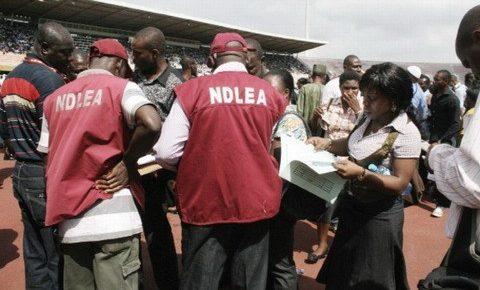 NDLEA Arrests 72 Suspected Drug Peddlers, Seizes 6.65 kg of Illicit Drugs in Edo
