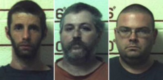 Three Men Jailed for Having Sex with Horses, Cows, Goats, Dogs