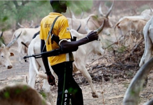 FG Supporting Herdsmen's Killings, Says Anambra Lawmakers