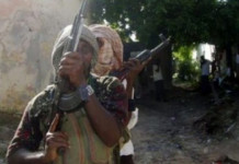 Bandits Kill 23 in Reprisal Attack in Zamfara