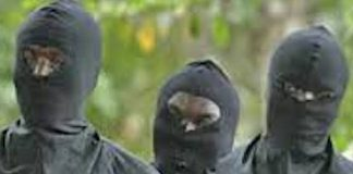 Bandits Kill 10, Injure Five in Fresh Attack on Katsina Village