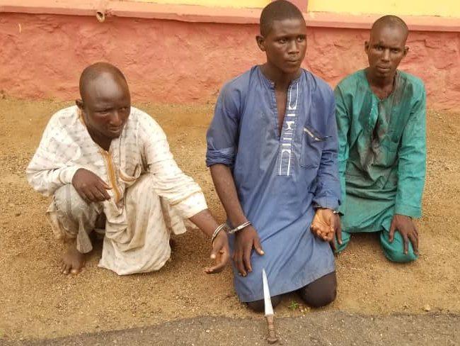 Police Arrest Three Herdsmen for Allegedly Killing Farmer in Ogun