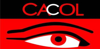 CACOL Hails Buhari's Call For Speedy Establishment Of Corruption Cases Court