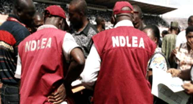 NDLEA Arrest Policeman, Another For Supplying Drugs To 'Boko-Haram' Terrorists