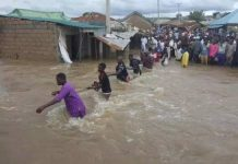Flood Hits 141 Communities, Destroys 7,666 Houses In Adamawa