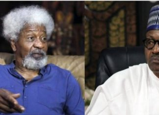 Court Invasion: Rein In Your Wild Dogs Of Disobedience, Soyinka To Buhari