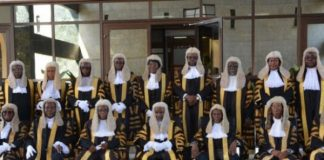 Imo Guber: Supreme Court Delivers 'American Wonder' Judgment — Intersociety