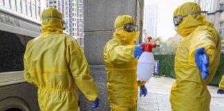Coronavirus: WHO Chief Warns Against 'Trolls, Conspiracy Theories'