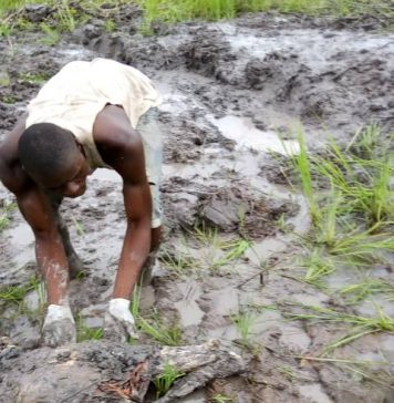 Decomposing Body Of Kidnapped Victim Found In Delta