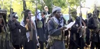 Boko Haram Attacks Yobe Community, Destroys Phone Masts
