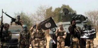 Boko Haram Kills Hospitalised Soldiers, Villagers In Niger