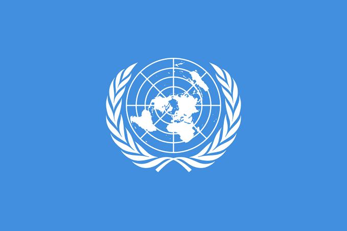 UN Announces COVID-19 Response In Nigeria's North East