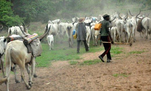 29 Fulani Herdsmen Killed By Gunmen In Military Uniforms