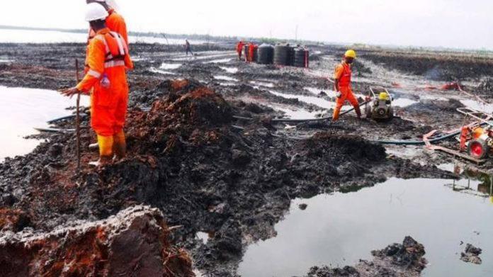 Ogoni Land: Cleanup Begins At 57 Sites – Minister