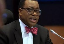 AfDB: Sierra Leone president assures Adesina of country's support