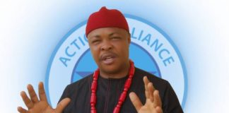 Edo and Ondo Elections: AA Remains The Only Credible Option For Peace, Good Governance - Udeze