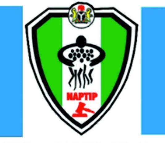 NAPTIP Arrests Labourer For Sodomising 12 Children In Sokoto