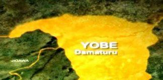 Vigilante Group Ambushes Suspected Kidnappers, Kills Three In Yobe